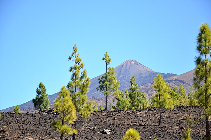 Teneryfa, Teide, wakacje, wycieczka na wulkan Teide, kolejka na wulkan, pozwolenie na wulkan, zakreecona, blog podróżniczy, wskazówki podróżnicze