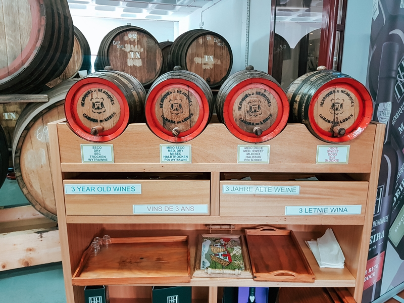Madera, Madeira wine, winiarnia Madera, wakacje na Maderze