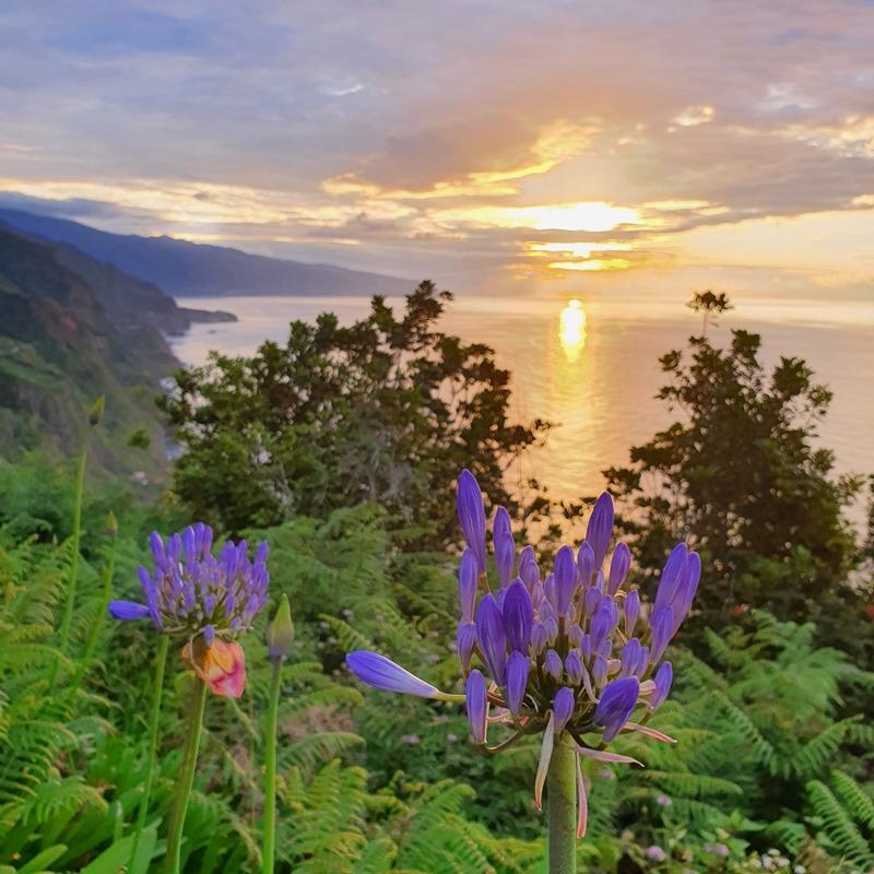punkt widokowy, madra, sao jorge, zachód słońca madera