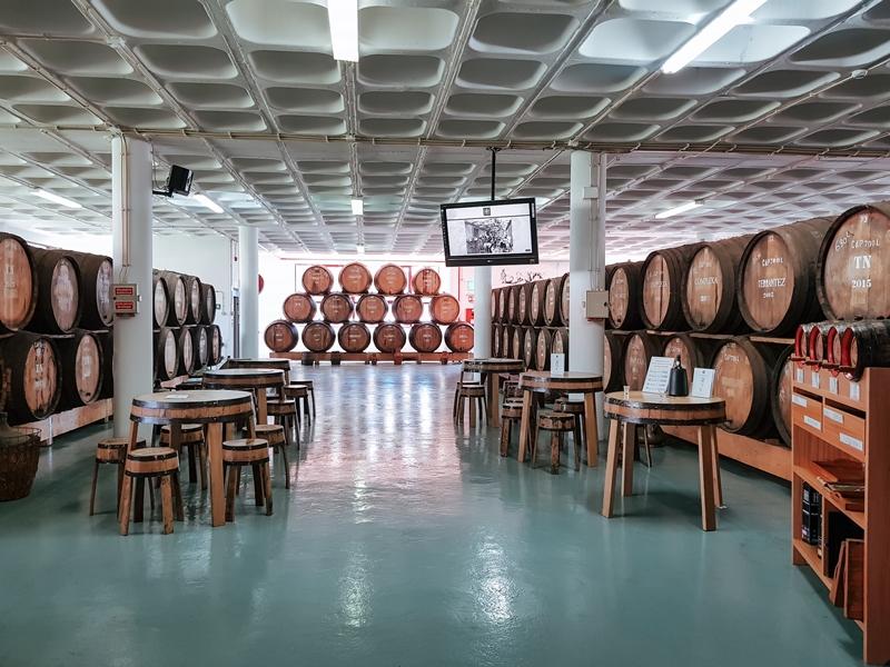 winiarnia Madera, Madeira wine, Madera, wakacje na Maderze